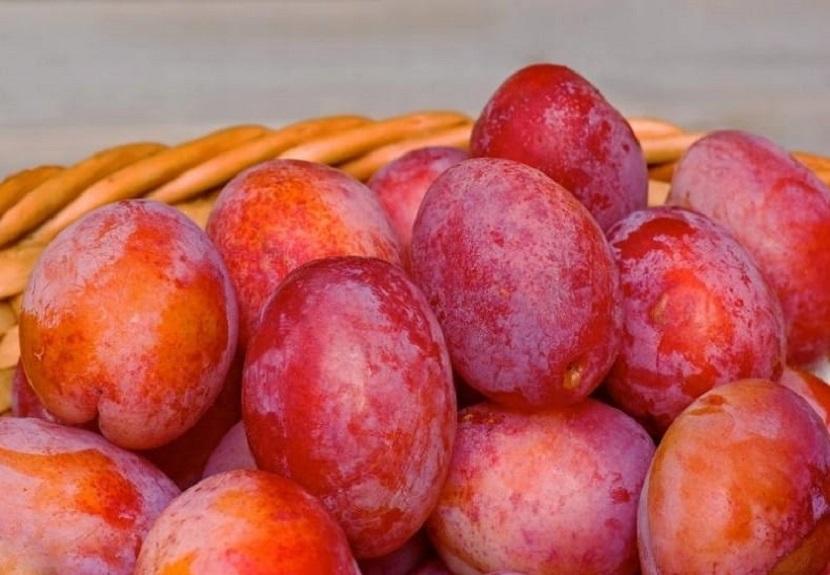 Pyszne śliwki – owoc, który zachwyca smakiem i bogactwem odmian